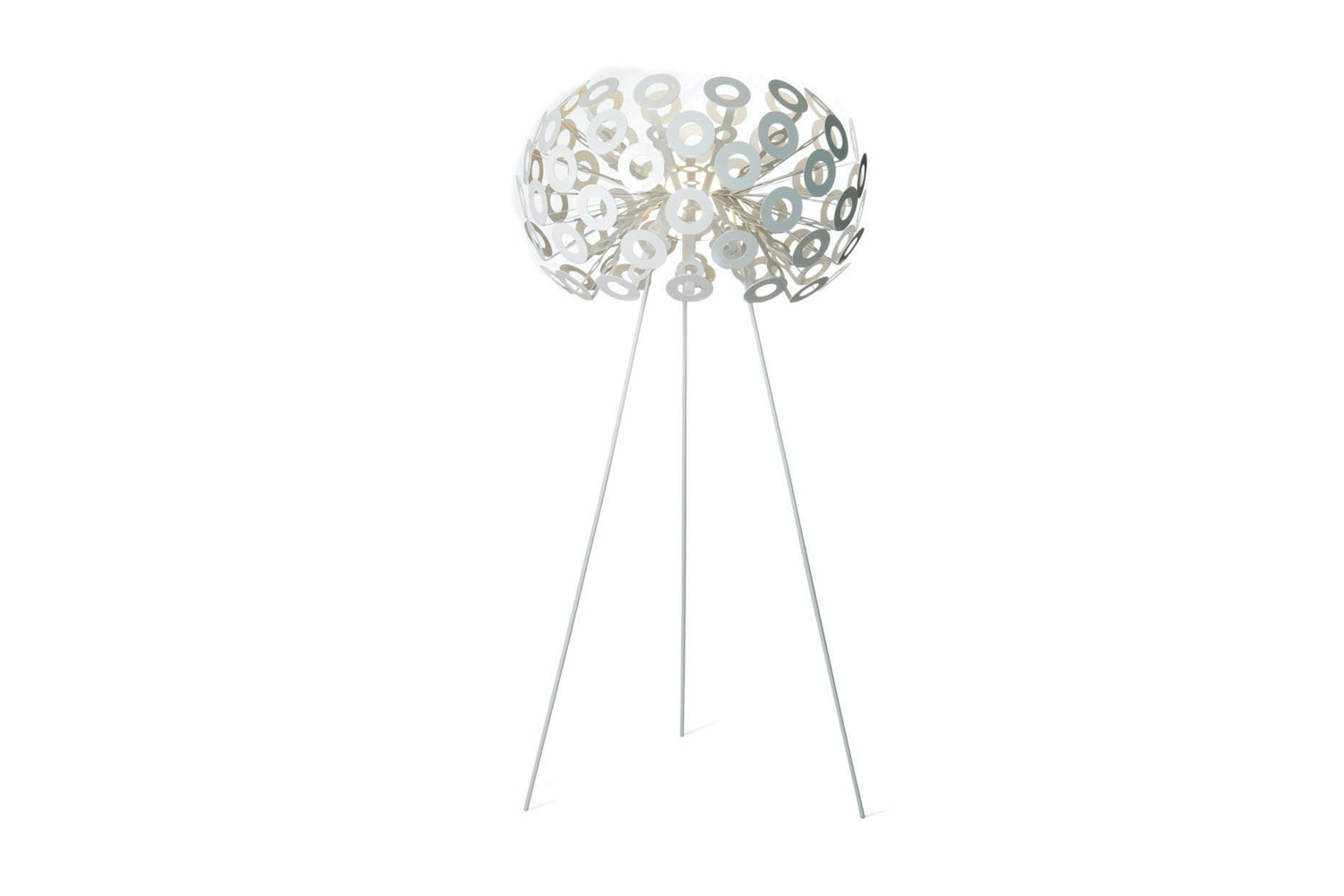 Dandelion Floor Lamp by Richard Hutten for Moooi