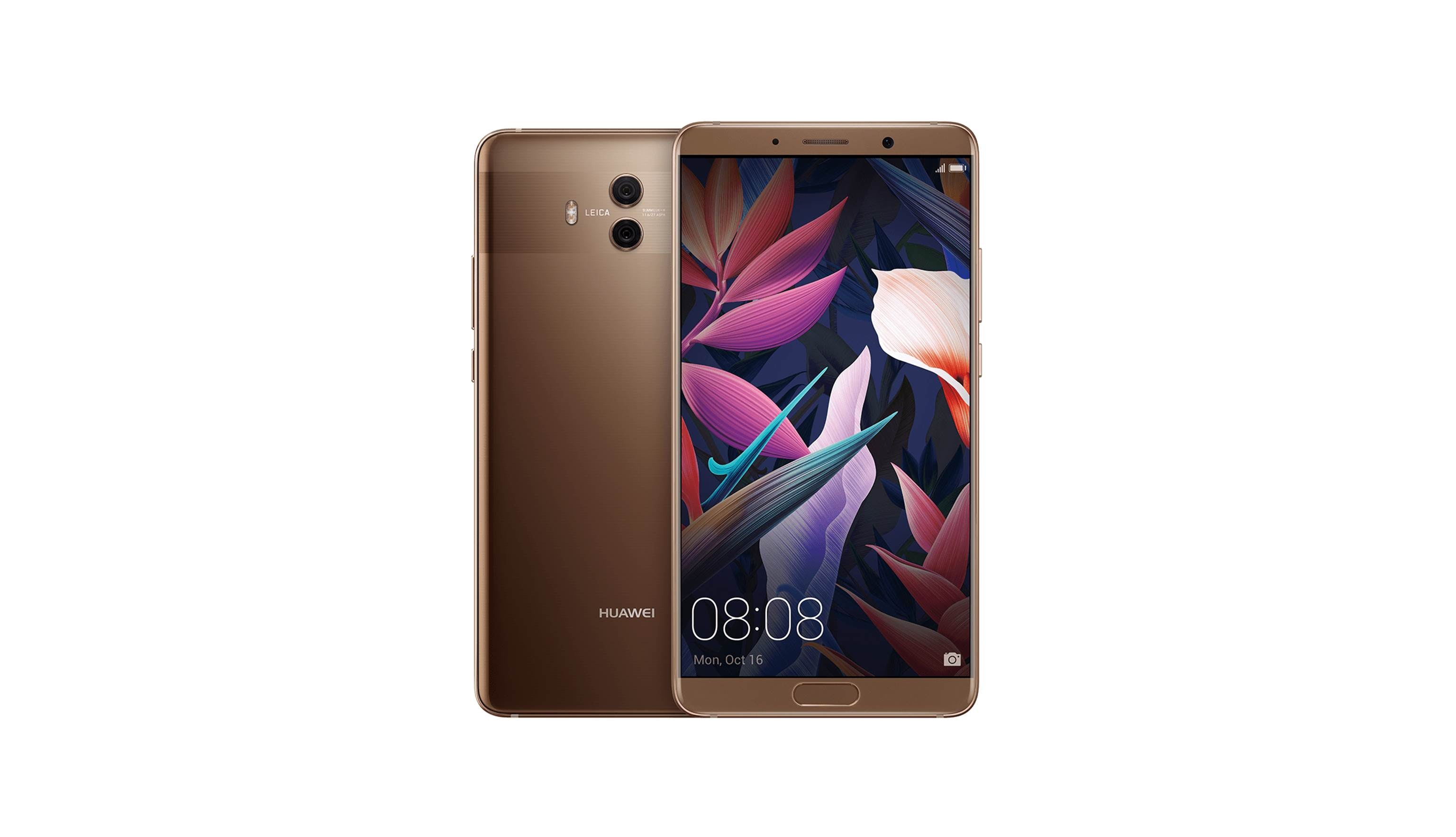 Huawei Mate 10 (2017) - Mocha Brown (1)