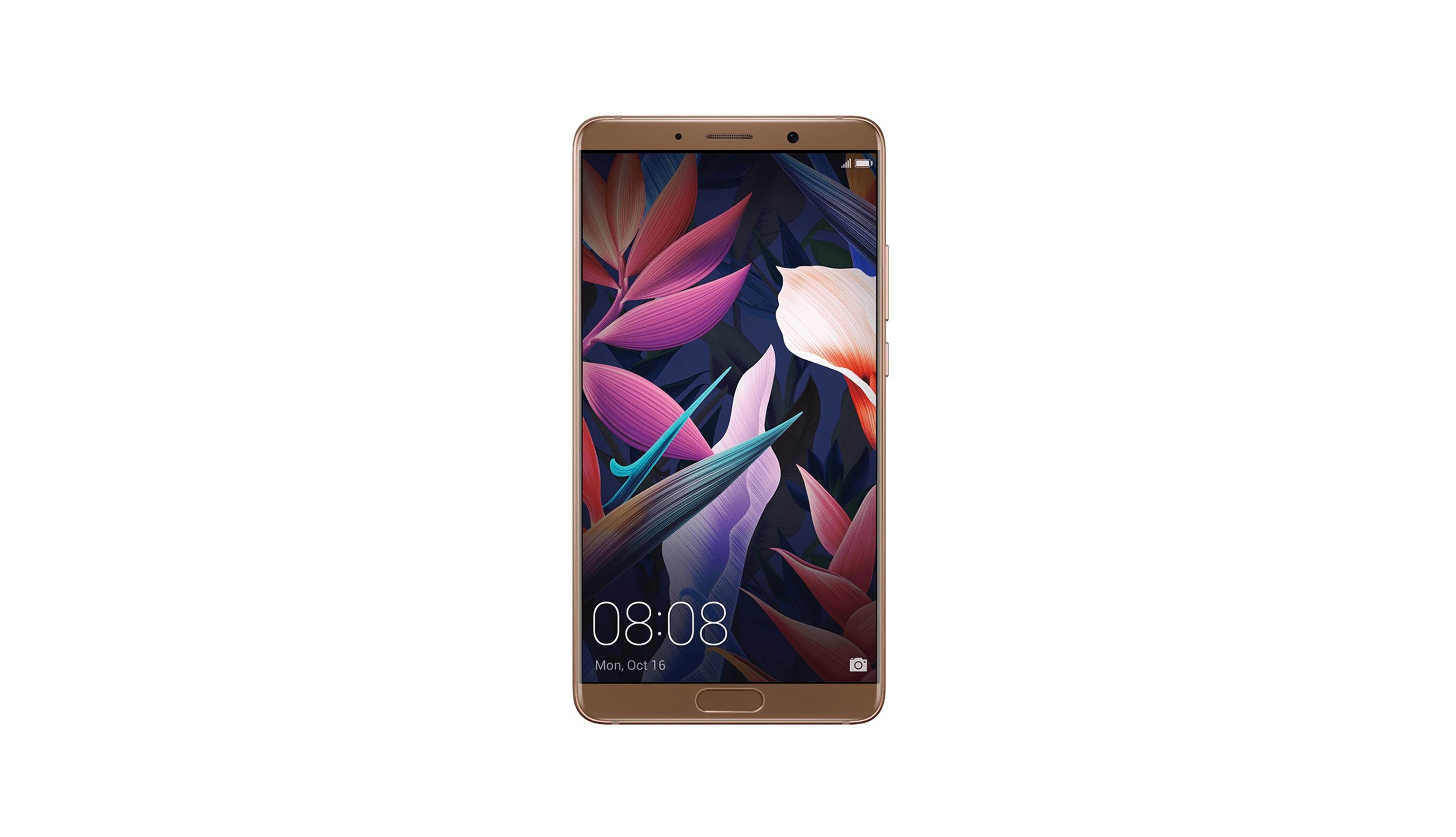 Huawei Mate 10 (2017) - Mocha Brown (2)