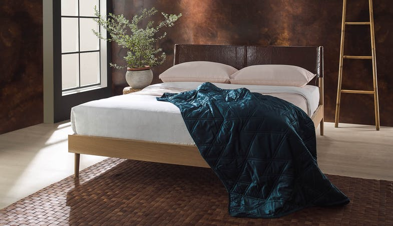 Oliver B Norway Bed Frame Queen Size Harvey Norman