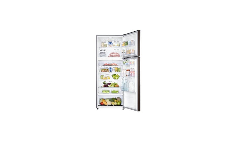 Samsung RT46K6237DX/SS (453 L) 2-Door Top Freezer Refrigerator (Opened View)