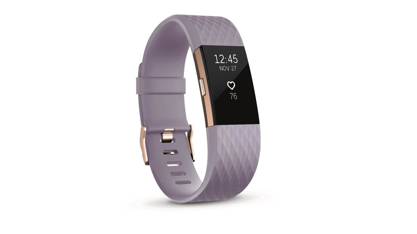 Fitbit Fb407rglvl Charge 2 Special Edition Large