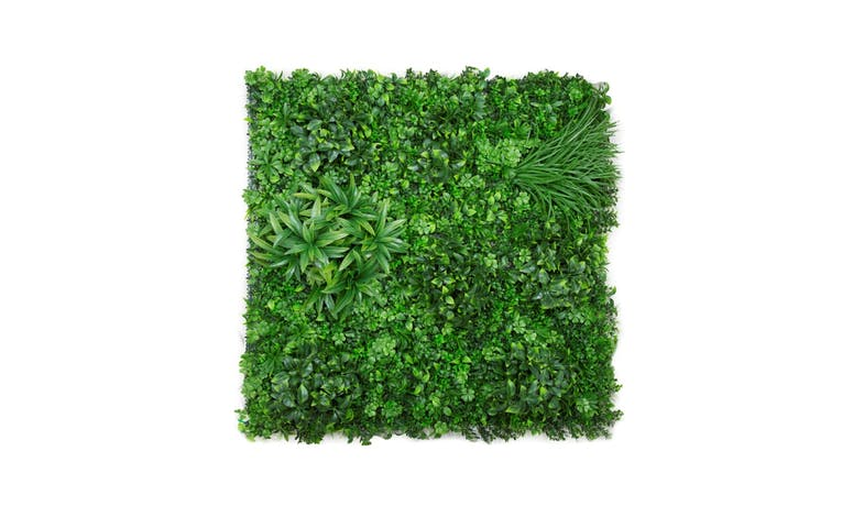 Florabelle Verigated Foliage - Green - 01