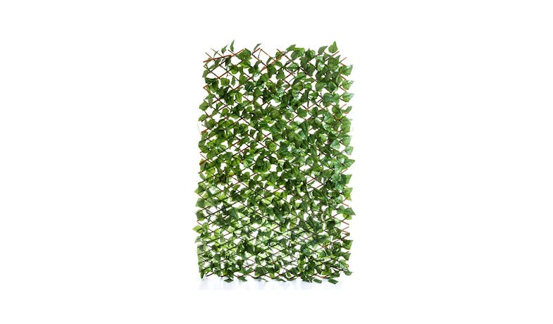 Florabelle Trellis Expands - Green