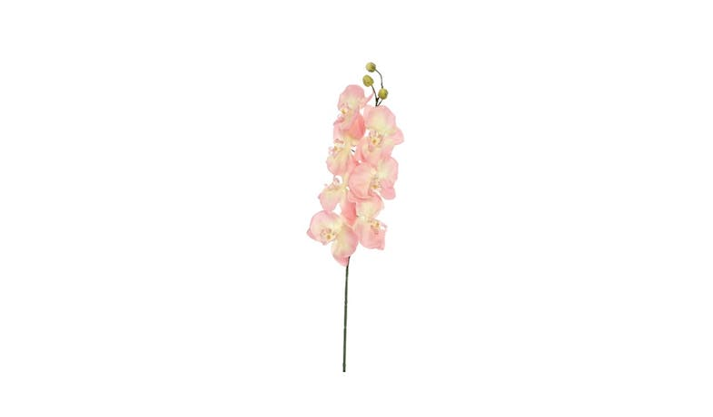 Swing Gift Naomi Dusty Orchids - Pink - 01