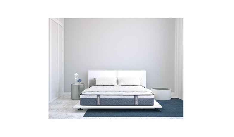 Back Pedic Delight Queen Mattress